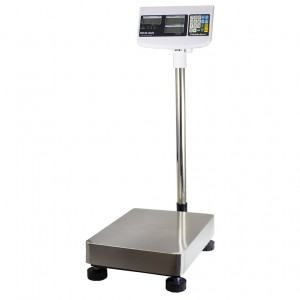 WS303 Digital Counting Scale