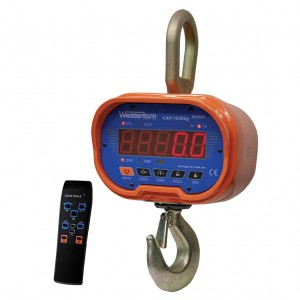 WS604 Crane Scale with remote