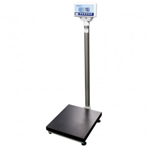 WM204 Medical Weight Management Scale